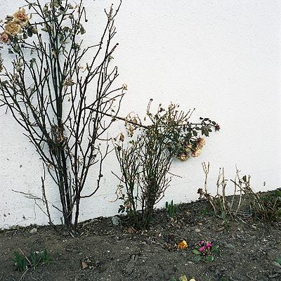 20080327
